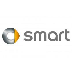 Rámiky pre vozidlá Smart